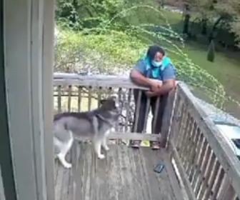 【動物】犬を怖がりデッキの外に逃げ、柵にしがみ付く女性