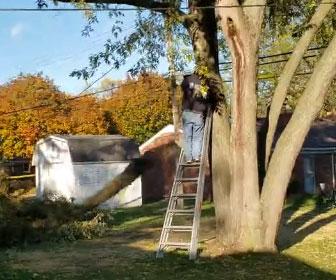 【衝撃】脚立に登り木を切る男性に悲劇が…