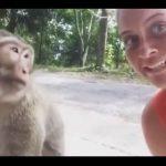 【動物】サルにギリギリまで近づき写真撮影をする女性に悲劇が…