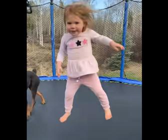 【動物】少女と犬がトランポリンで楽しそうに遊ぶ