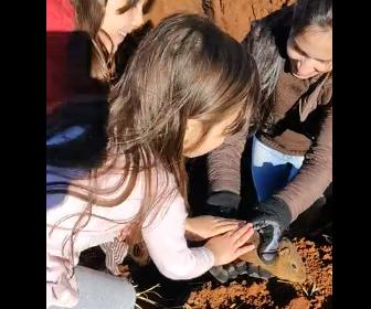 【動物】母親が穴に落ちたネズミを捕まえて娘に見せるが…