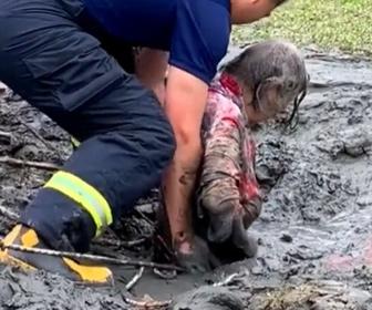 【衝撃】3日間泥にはまって動けない女性をレスキュー隊が救出する