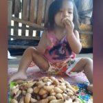 【衝撃】1歳の女の子が幼虫を食べまくる衝撃映像