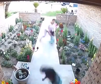 【動物】襲いかかってくるピットブルから母親と2人の娘が必死に逃げる