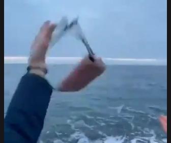 【動画】女性が海にコインを投げるが誤ってバッグも投げてしまう