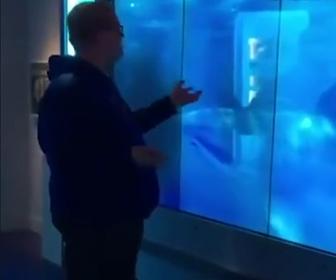 【動画】液晶モニタを使ったドッキリ。突っ込んでくるサメに驚く男性