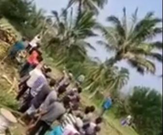 【動画】大勢でロープを引っ張り高いヤシの木を倒そうとするが…