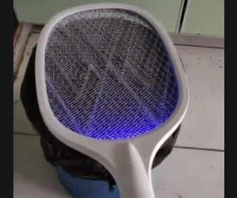 【動画】 蚊を一網打尽にする方法