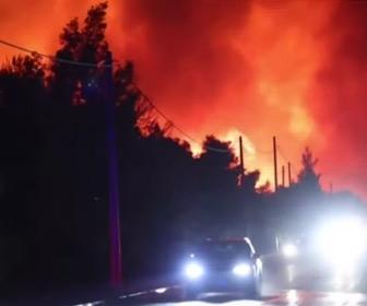 【動画】ギリシャで山火事多発、住民が船で避難する