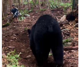 【動画】15歳のマウンテンバイクライダーの前にクマが現れる