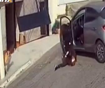 【動画】女性が車庫から車を出すが、犬も出てしまい…衝撃の結末