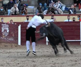 【動画】闘牛で猛突進してくる暴れ牛の角にマタドールが刺されてしまう衝撃映像