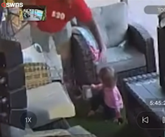 【動画】裏庭で虫と遊ぶ18ヵ月の娘。父親が近づくと虫は巨大なタランチュラだった。