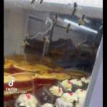 【動画】菓子パンが並ぶショーケースの中に大量の蜂がいる衝撃映像