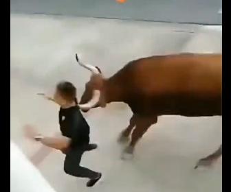 【動画】牛追い祭りで男性が暴れ牛から必死に逃げるが転倒し…