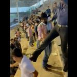 【動画】ロデオ会場の観客席で喧嘩。男性を蹴った男がバランスを崩し…