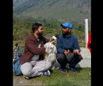 【動画】レポーターがインタビュー中、ヤギがマイクコードを噛み切ってしまう衝撃映像