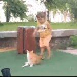 【動画】少女がネコを蹴り、怒ったネコが少女を追いかけるが…
